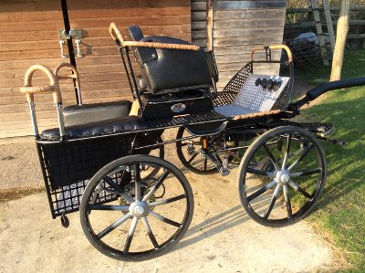 Hartland 3 phase pony pair carriage