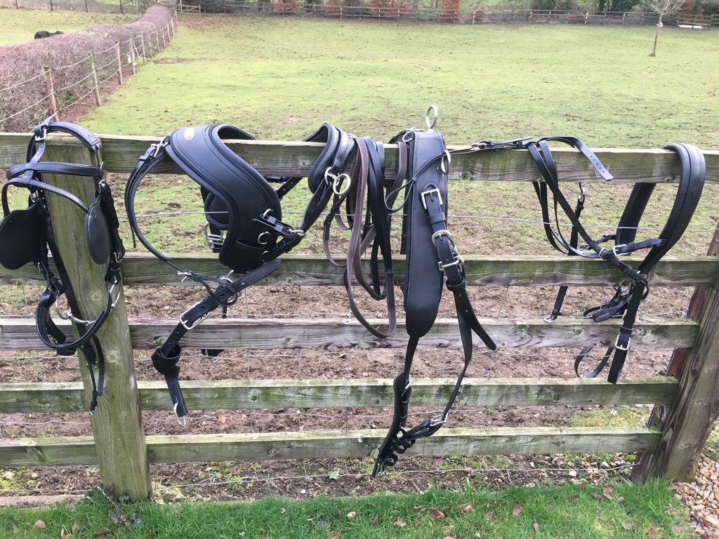 Single pony harness