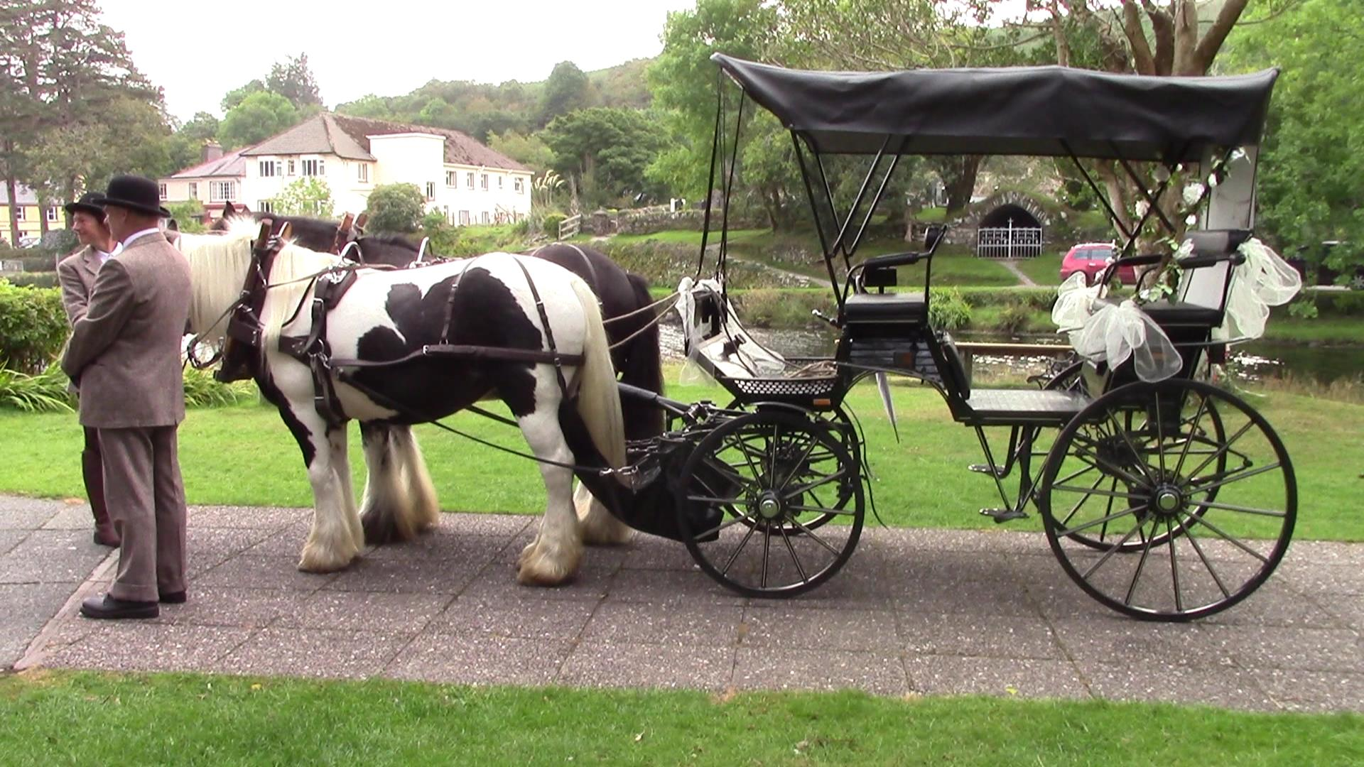 4-wheeler carriage for sale