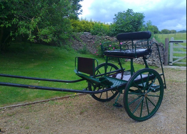 Horse driving trials forum: Dartmoor carriage for sale £400