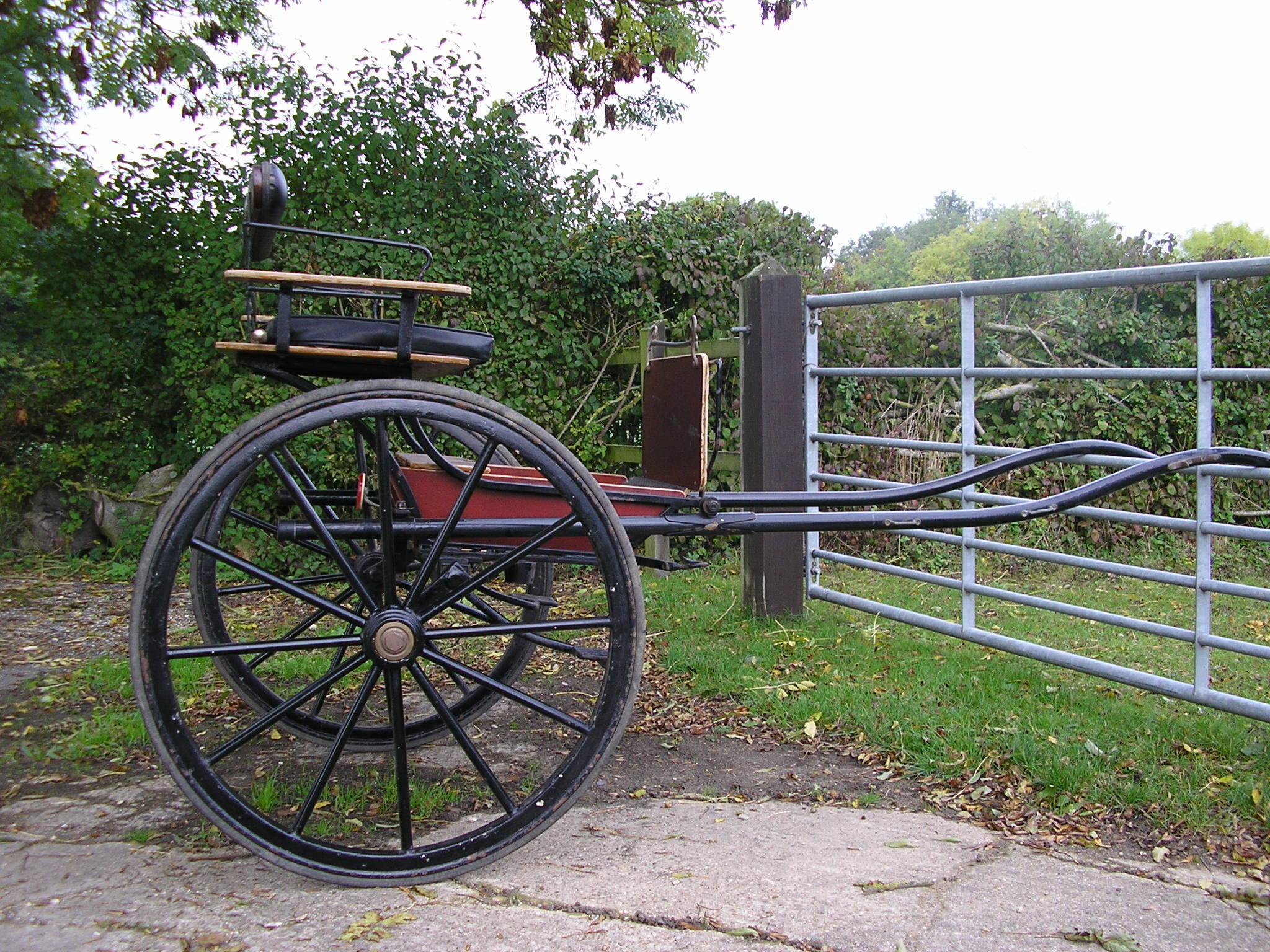 Bennington Buggy